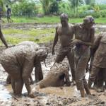 mud bath activity at picnic spot